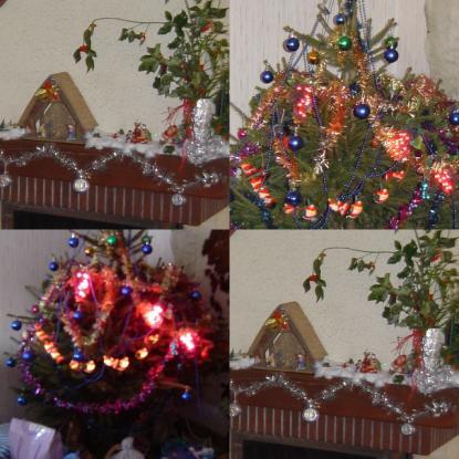 Noel 2006
